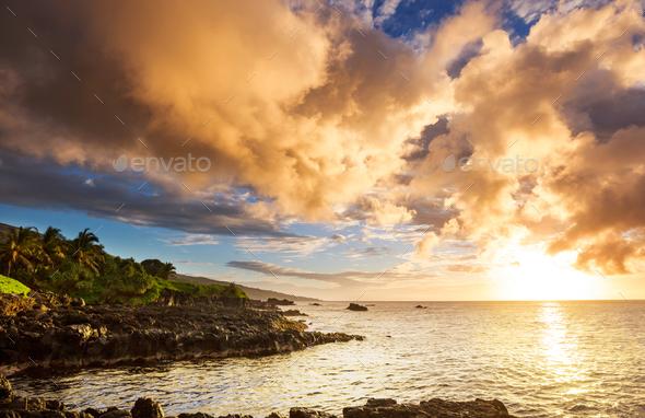 Maui - Stock Photo - Images