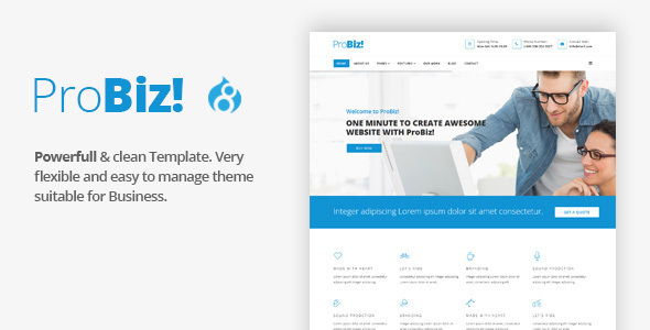 ProBiz! - Multipurpose Business Drupal 8 Theme - Business Corporate