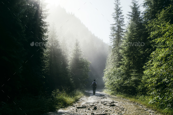 Man on mountain road with sun rays and pine trees - Stock Photo - Images