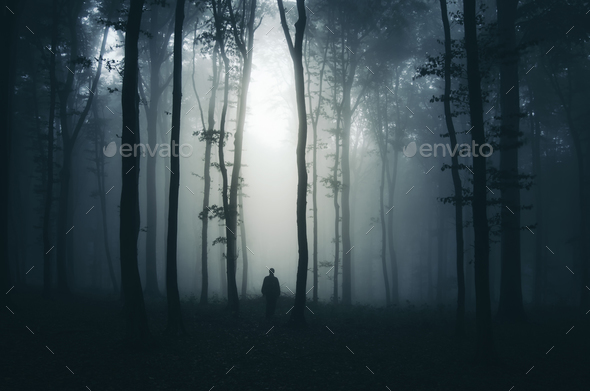 Silhouette of man in mysterious dark haunted forest at night - Stock Photo - Images