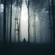 Silhouette of man in mysterious dark haunted forest at night - PhotoDune Item for Sale