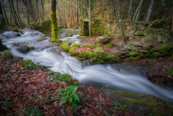 Streams through ruins - Stock Photo - Images