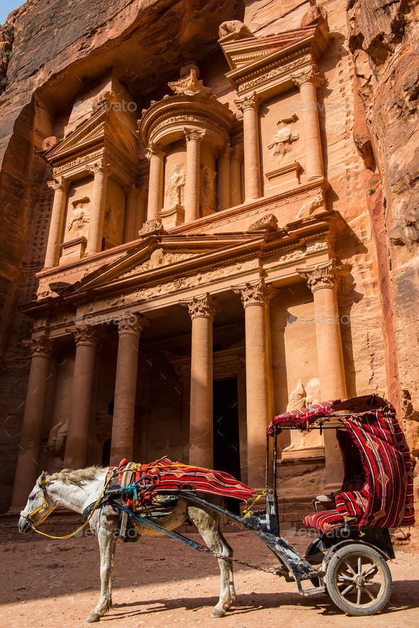 Horse carriage in the front of Treasury. Petra, Jordan. Ancient stone carving  - Stock Photo - Images