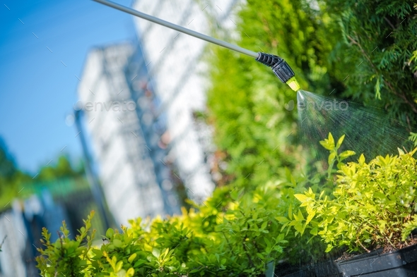 Garden Plants Insecticide - Stock Photo - Images