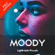 Moody Portrait Lightroom Presets - GraphicRiver Item for Sale