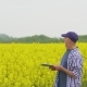 Mature Farmer Writing In Clipboard At Rapeseed Cultivated Field - VideoHive Item for Sale