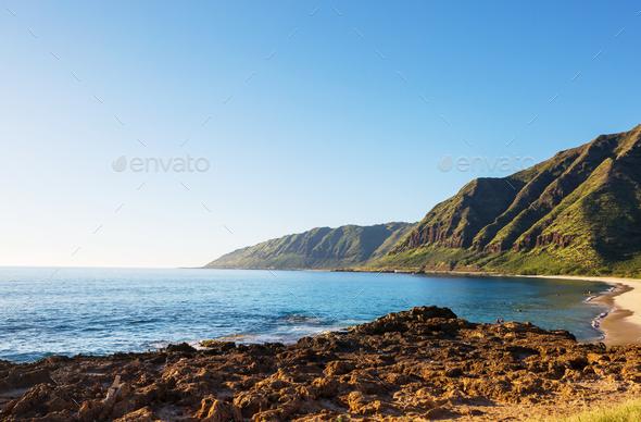 Oahu - Stock Photo - Images