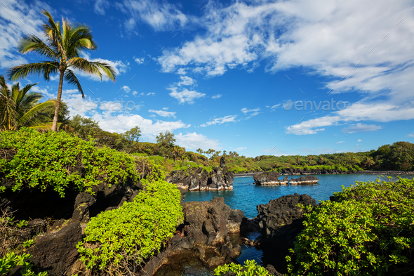 Maui - Stock Photo - Images