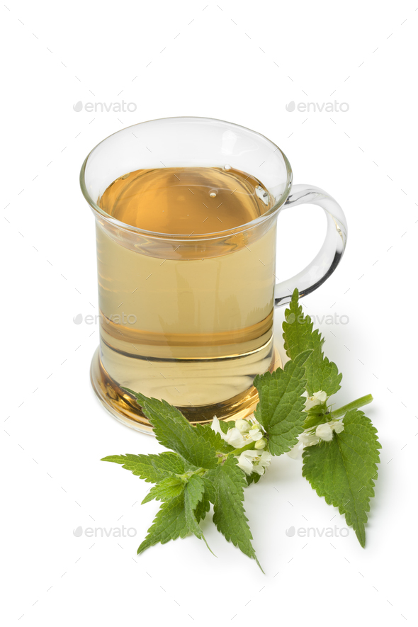 Glass of healthy white dead nettle tea - Stock Photo - Images