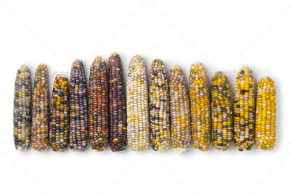 Row of colorful gem glass corn on cob - Stock Photo - Images