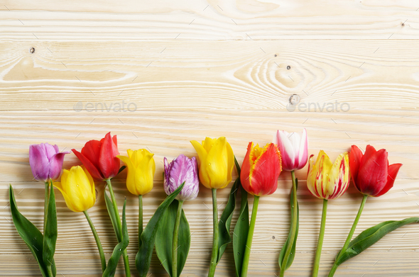 Colorful tulip flowers on wooden table background with space for - Stock Photo - Images