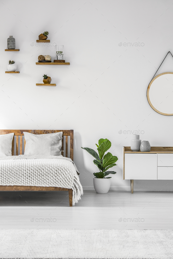 Plant in minimal bedroom interior - Stock Photo - Images