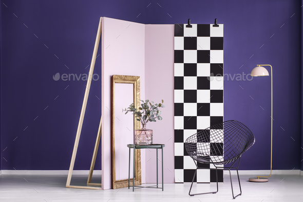 Violet studio interior with plant - Stock Photo - Images