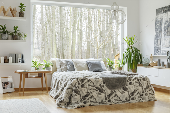 Plants in natural bedroom interior - Stock Photo - Images