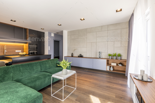 Spacious green apartment interior - Stock Photo - Images