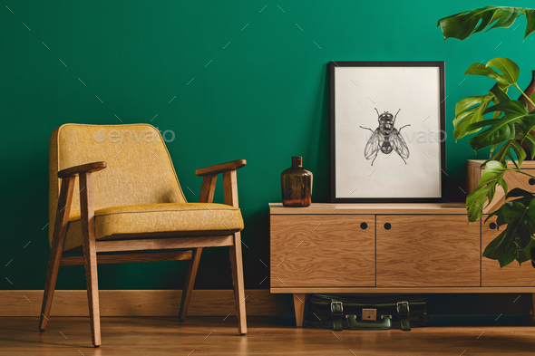 Insect poster and yellow armchair - Stock Photo - Images
