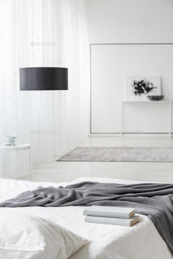 Monochromatic bedroom interior - Stock Photo - Images