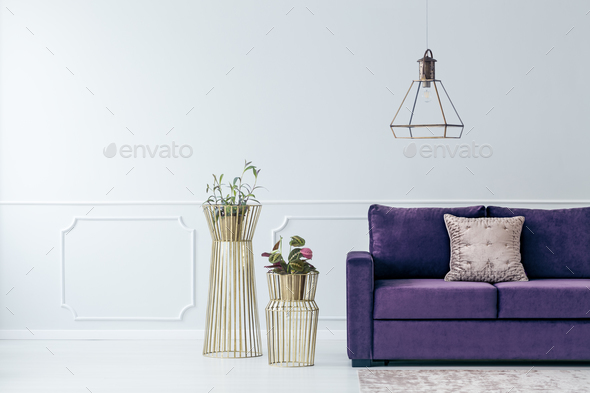 Violet elegant living room interior - Stock Photo - Images