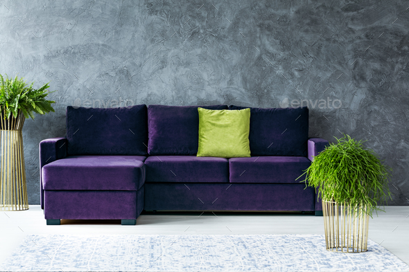 Green and purple living room - Stock Photo - Images