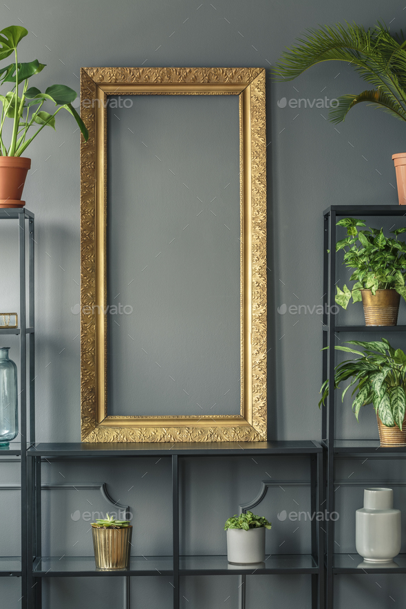 A gold frame and plants in vases on black shelves next to a grey - Stock Photo - Images