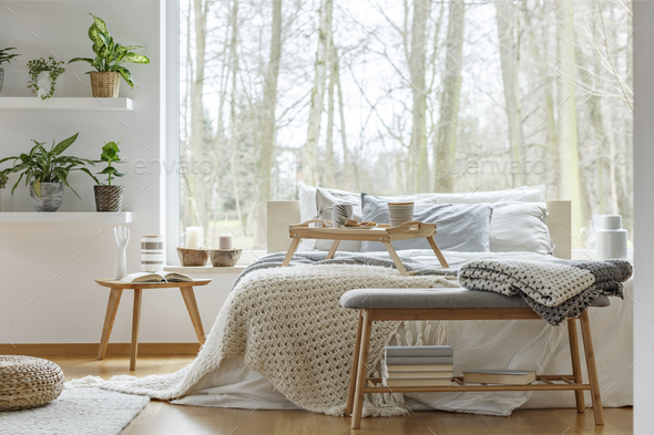 Plants in cozy bedroom interior - Stock Photo - Images