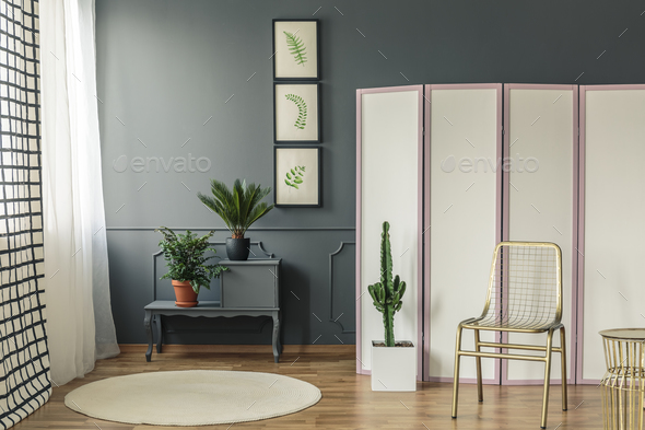 Elegant living room interior with plants on black cupboard next - Stock Photo - Images