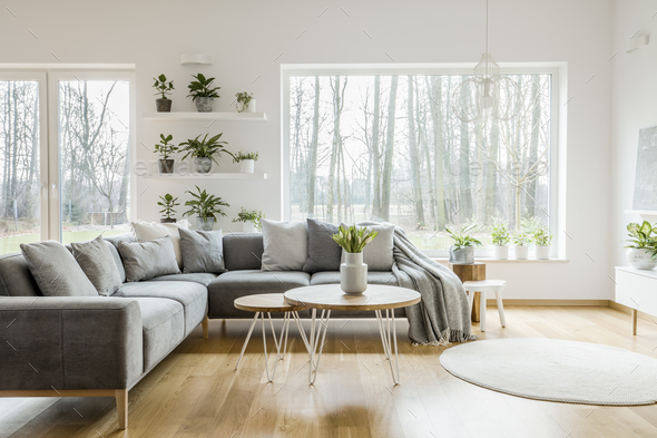 Natural grey living room interior - Stock Photo - Images