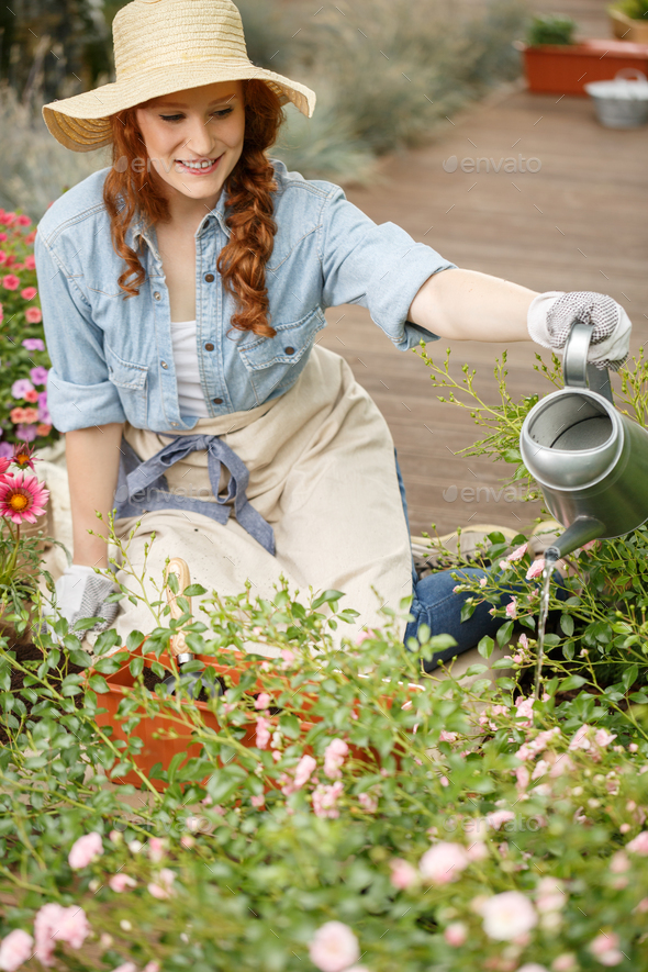 Smiling gardener woman watering flowers - Stock Photo - Images