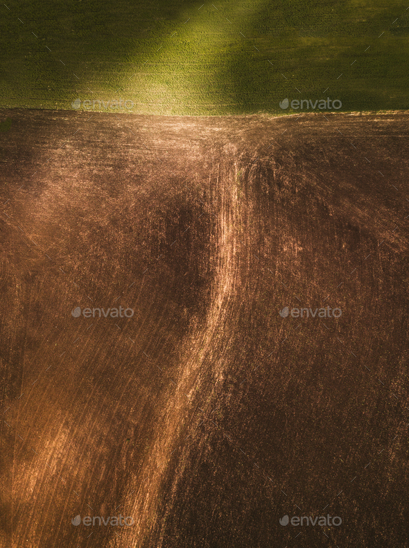 Field From Above - Stock Photo - Images