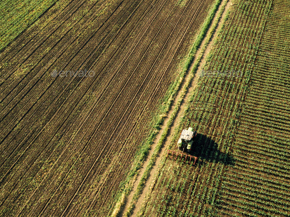 Tractor cultivating corn crop field, aerial view - Stock Photo - Images