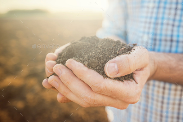 Handful of soil, close up of farmer's hands - Stock Photo - Images