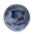 Blueberry in close-up isolated on a white background. - PhotoDune Item for Sale