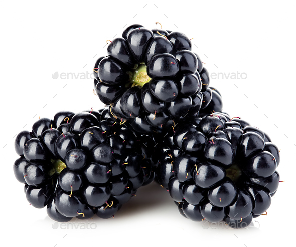 Fresh blackberries close-up isolated on a white background. - Stock Photo - Images