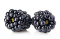 Fresh blackberries close-up isolated on a white background. - PhotoDune Item for Sale