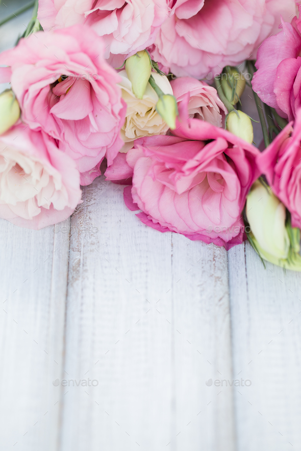 Fresh pink flowers frame on wooden background - Stock Photo - Images