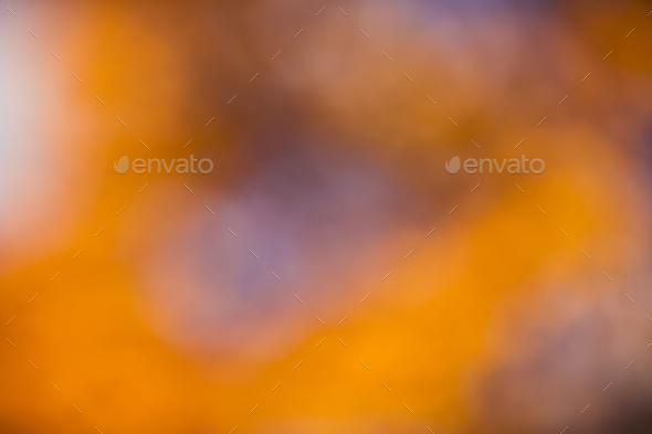 golden orange autumn background blur bokeh, defocusing lens - Stock Photo - Images