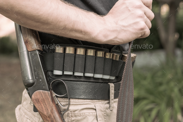 hunting rifle and cartridges - Stock Photo - Images