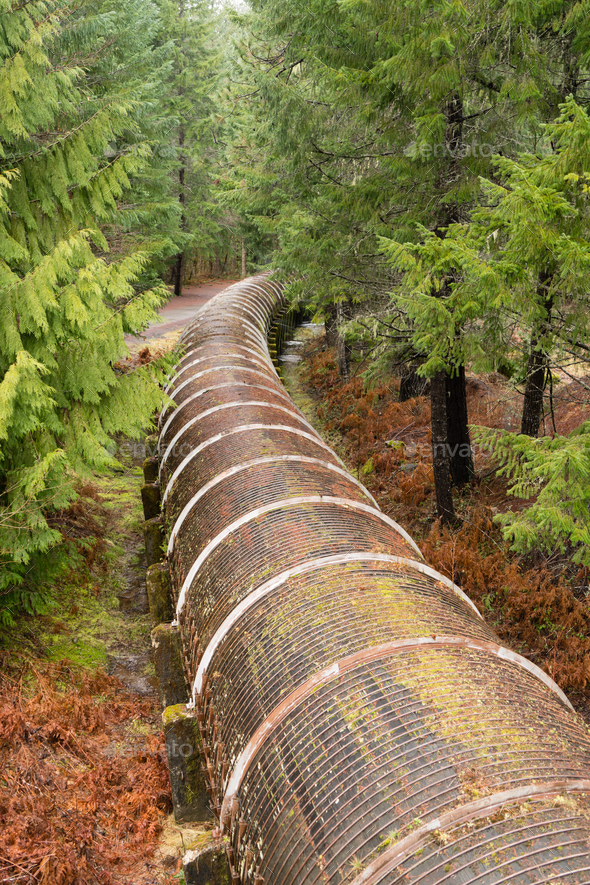 Resource Pipeline Cuts Through National Forest - Stock Photo - Images