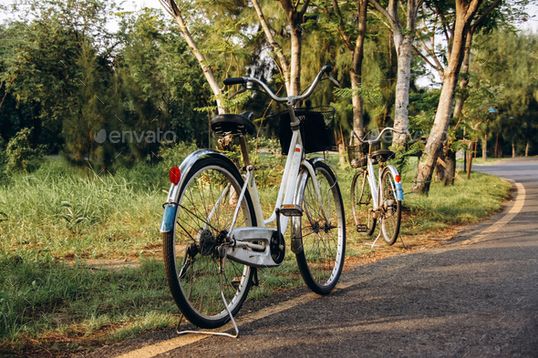two white bicycles - Stock Photo - Images