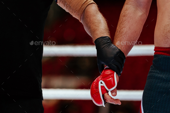 hands of referee and MMA fighter  - Stock Photo - Images
