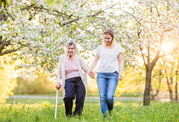 Elderly grandmother with crutch and granddaughter in spring nature. - Stock Photo - Images