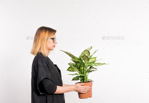 Young beautiful woman with black clothes in studio on white background, holding a plant. - Stock Photo - Images
