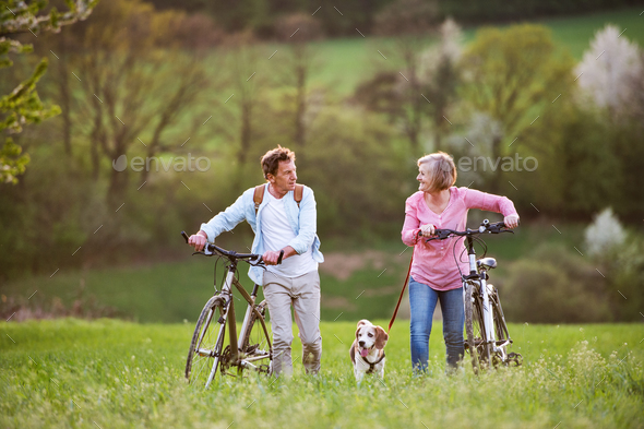 Beautiful senior couple with bicycles and dog outside in spring nature. - Stock Photo - Images