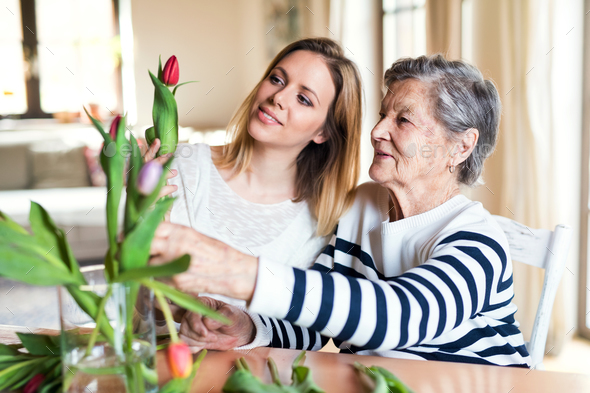 Elderly grandmother with an adult granddaughter at home. - Stock Photo - Images