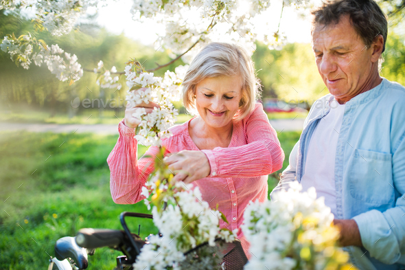 Beautiful senior couple with bicycles outside in spring nature. - Stock Photo - Images