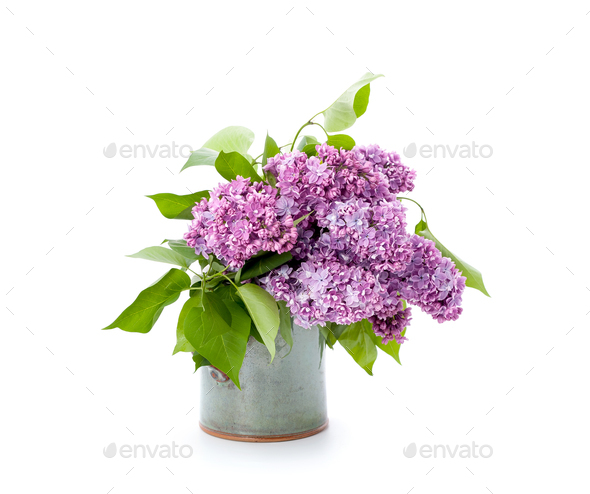 A bouquet of pink lilac in a ceramic vase on a clean white backg - Stock Photo - Images
