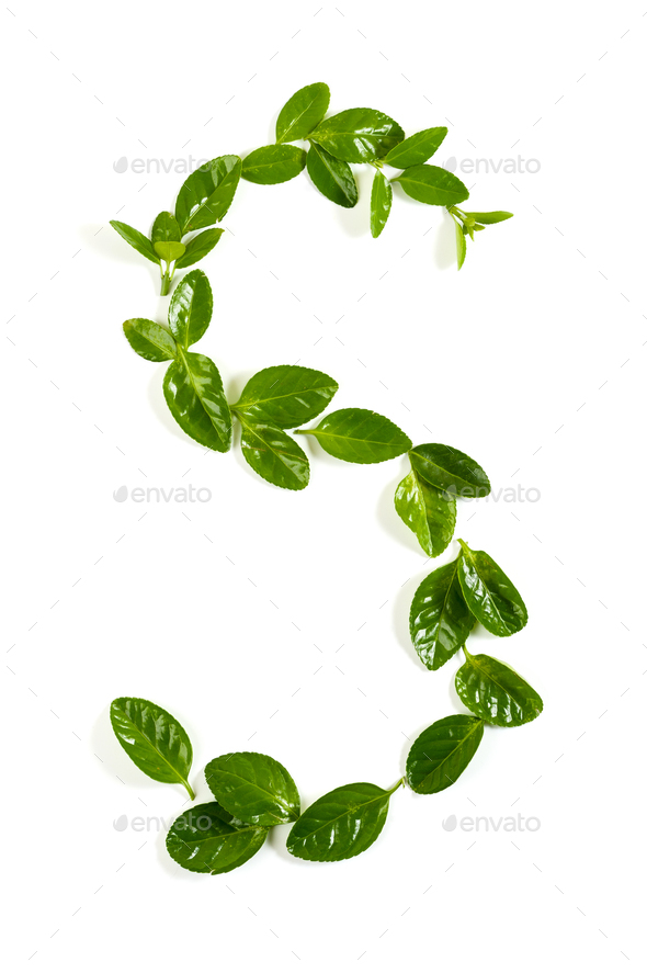 "The letter ""S"" is from the green leaves of the Beresket plant. I - Stock Photo - Images"