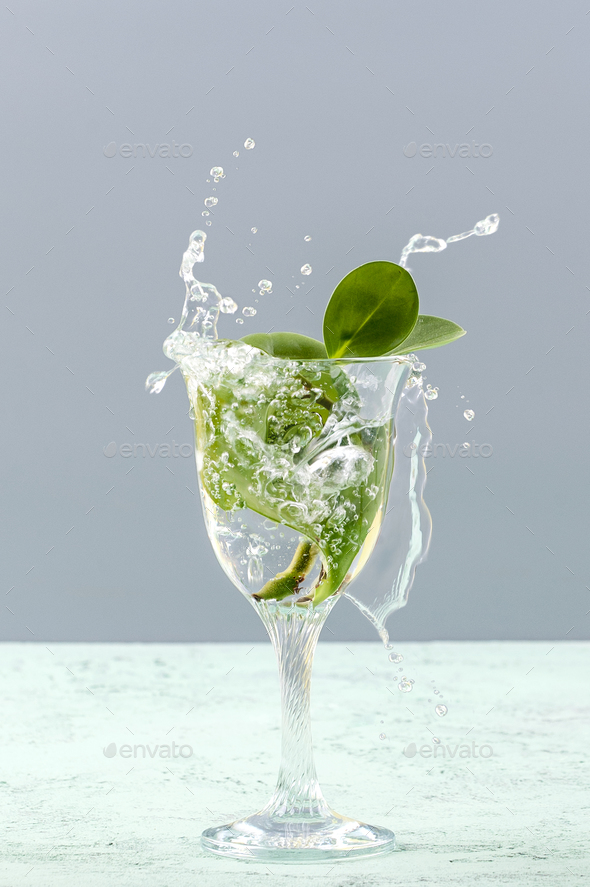 Green leaves in a glass with a splash of water on a light gray b - Stock Photo - Images