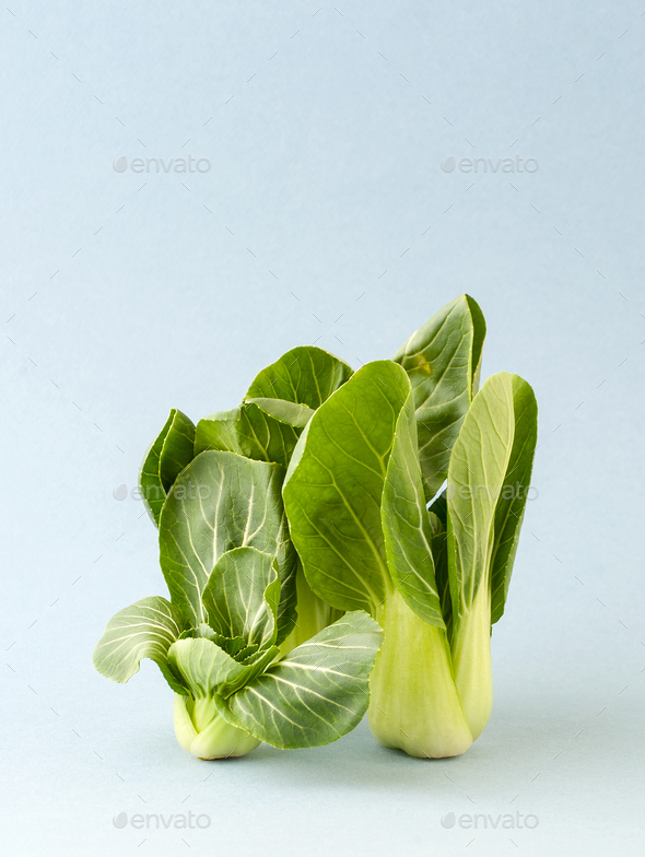 Ripe young cabbage Pak-choi (salad) on a light blue background. - Stock Photo - Images
