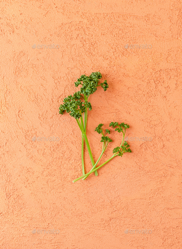A few branches of curly parsley on a textured orange table. - Stock Photo - Images